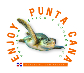 Enjoy Punta Cana